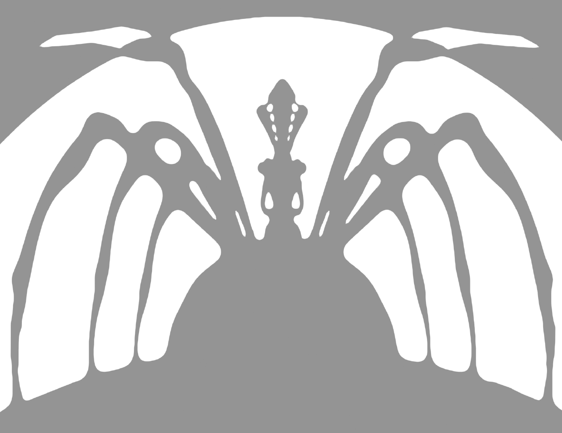 Lolth Pumpkin Template « DDOcast – A DDO Podcast!